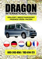 Dragon International-Trans